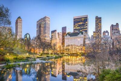 Картина Центральный парк города Нью-Йорка в сумерках