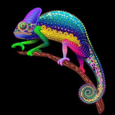 Картина Chameleon Фэнтези цвета радуги