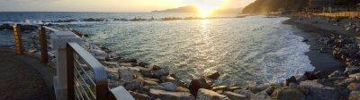 Картина Chiavari beach panoramic view