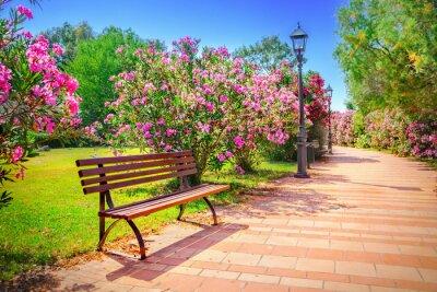 Картина Городской парк