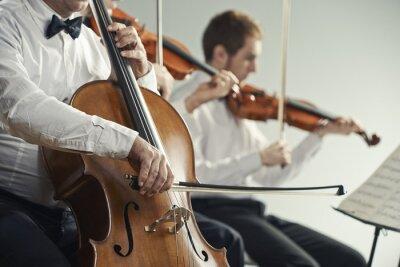 Картина Концерт классической музыки