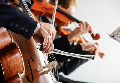 Картина Классическая музыка: концерт