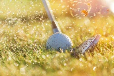 Картина Крупным планом мяч для гольфа.