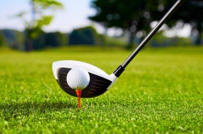 Картина Крупным планом Golfball тройник для первого удара
