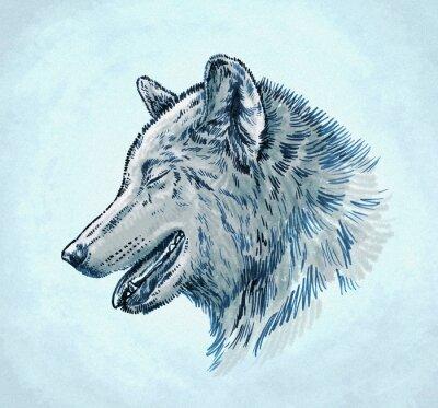Картина Цвет чернил выгравировать нарисовать волка иллюстрации