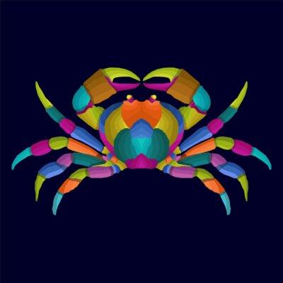 colorful crab pop art portrait