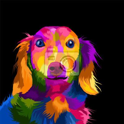 colorful dog pop art portrait vector illustration
