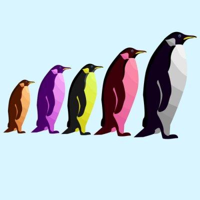 colorful five penguin pop art portrait