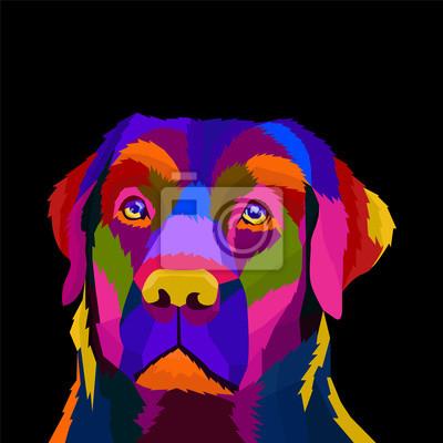 colorful head dog pop art portrait