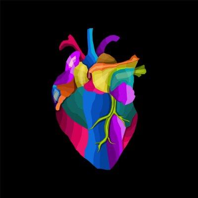 colorful hearth human pop art portrait