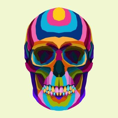 colorful skull art coloring book pop art portrait vector illustration