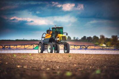 Картина Зерноуборочный комбайн сельскохозяйственная машина сбора золотого спелого пшеничного поля