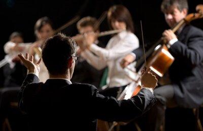 Картина Дирижер направляя симфонический оркестр