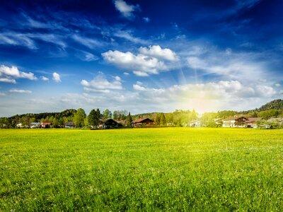 Картина Деревня луг поле с солнцем и голубое небо