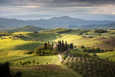 Картина Countryside near Pienza, Tuscany, Italy