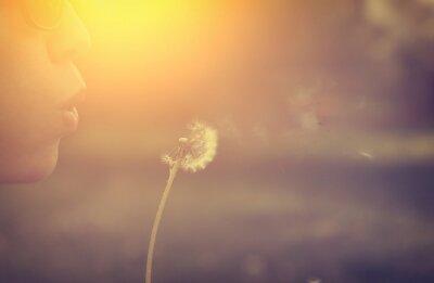 Картина Одуванчик вентилятор женщина
