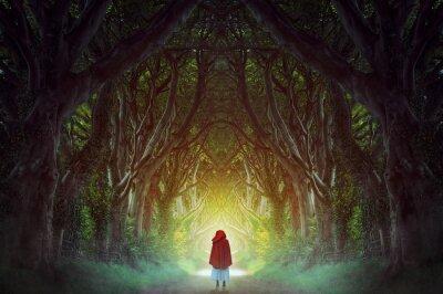 Картина Темный лес дорога