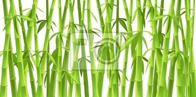 Дизайн китайских бамбуковых деревьев