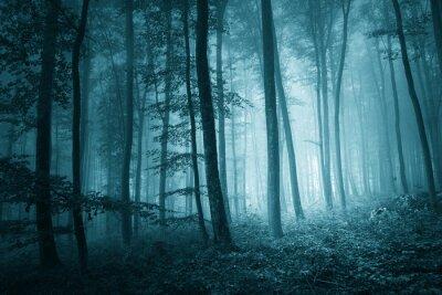 Картина Мечтательный мистик синий цвет туманный лес
