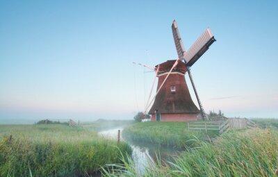 Картина Голландская мельница в утреннем свете