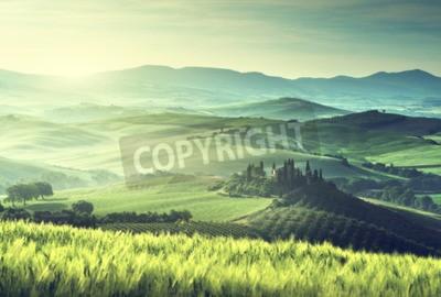 Картина Раннее весеннее утро в Тоскане, Италия