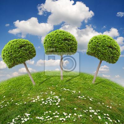 экология пейзаж