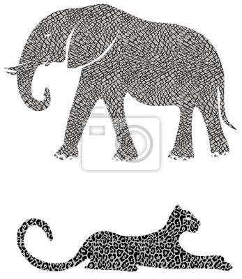 Слон и Cheetah
