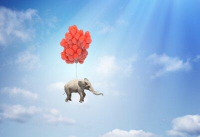 Картина Слон с воздушными шарами