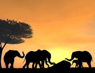 Картина Elephants Morn Their Dead at sunset, a very tender scene.