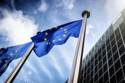 Картина European Union flags