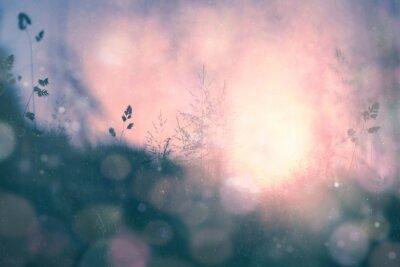 Картина Фэнтези закат боке размытый фон луг