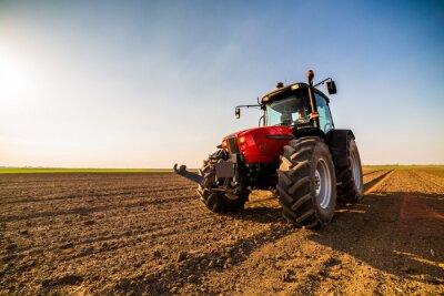 Картина Фермер, удобряющий пахотные земли азотом, фосфором, калийными удобрениями