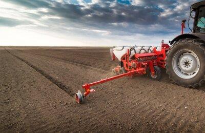 Картина Фермер с посевом тракторов - весной посев на сельскохозяйственном поле