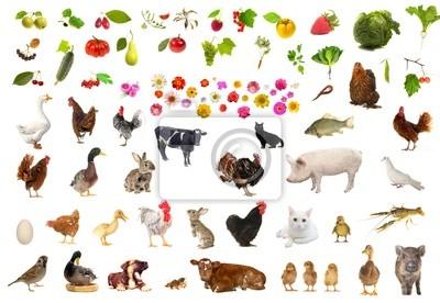 Картина сельское хозяйство