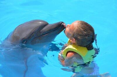 Картина Дочь embrassant ООН дофин