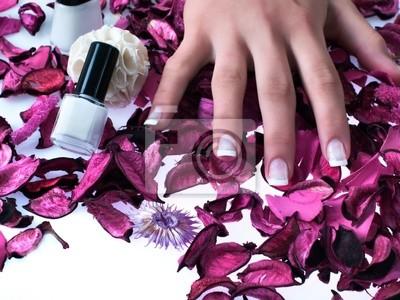 Пальцы, красивые ногти на фиолетовом Розен