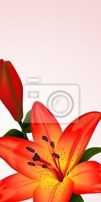 Картина Цветочные карты или баннер с двукрашенных лилии