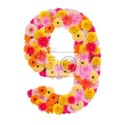 цветок номер восемь. Цветочный элемент красочный алфавит из фр