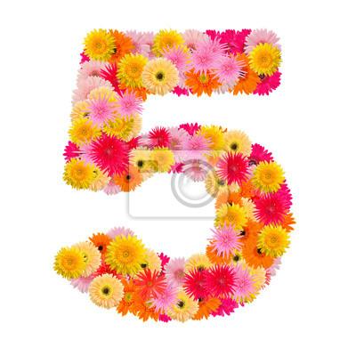 цветок номер пять. Цветочный элемент красочный алфавит сделал сюда