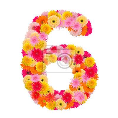 Цветочный элемент красочных алфавита сделаны из
