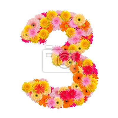 цветок numberthree. Цветочный элемент красочный алфавит сделал сюда