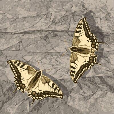 Картина Полет бабочки над гранж стену.