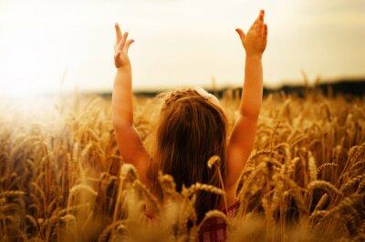 Картина Девочка на пшеницу