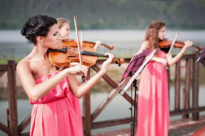 Картина Девушки играет на скрипке