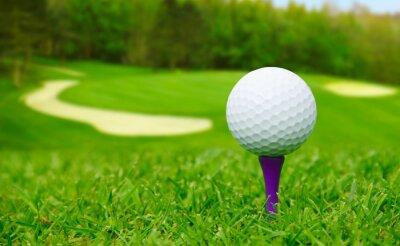 Картина Мяч для гольфа на курсе