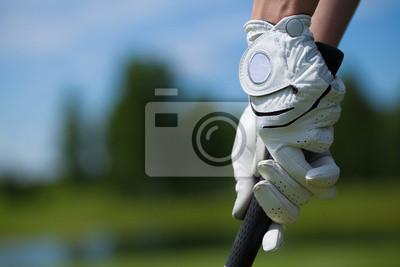 Картина Игрок в гольф перчатки держать железо или клюшки