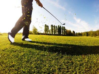 Картина Игрок в гольф выполняет гольф выстрел из фарватера.