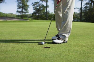 Картина Игрок в гольф краны в с клюшки на зеленой с деревьями на берегу озера