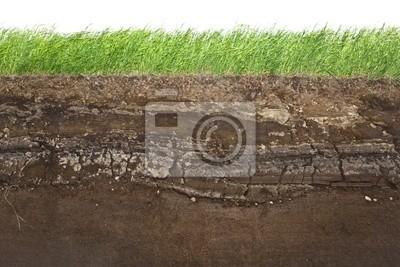 Трава и почвенные слои на белом