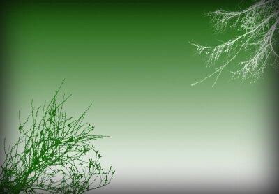 зеленый фон листвы